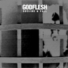 GODFLESH - Decline & Fall (2014) (LP)