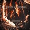 FOREST OF IMPALED - Demonvoid (1999)