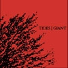 TIDES / GIANT - Split Album (2008)