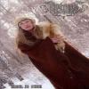 ARKONA - Jizn Vo Slavu (2009) (DVD)