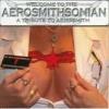 AEROSMITHSONIAN - Aerosmith Tribute (2CD)