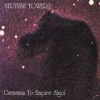 NEPTUNE TOWERS - Caravans To Empire (1994) (remastered