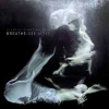 SIAMESE FIGHTING FISH - Breathe See Move (2013)