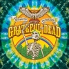 GRATEFUL DEAD - Sunshine Daydream (Live at Veneta 1972) (3CD+DVD