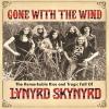 LYNYRD SKYNYRD - Gone With The Wind (DVD) (2015)