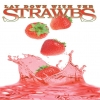 STRAWBS - Lay Down With The Strawbs - Live 2006 (DVD) (2008)