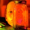 ALICE IN CHAINS - Jar Of Flies / SAP (1994) (Limited edition HQ 2LP