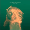 TEMPERANCE MOVEMENT - White Bear (2016)