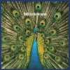 BLUETONES - Expecting To Fly (1996) (20th Anniversary edition LP