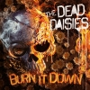 DEAD DAISIES - Burn It Down (Limited edition PICTURE DISC LP) (2018)