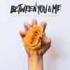 BETWEEN YOU & ME - Everything Is Temporary (2018) (LP)