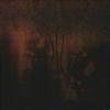 FARSOT - IIII (Limited edition DIGI CD) (2007)