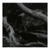 BARREN CANYON - World Of Wounds (2018) (LP)